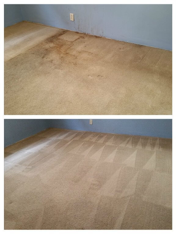 before and after carpet cleaning el monte ca