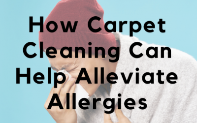 How Carpet Cleaning Can Help Alleviate Allergies