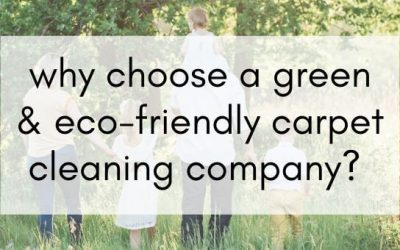 Why Choose a Green and Eco-Friendly Carpet Cleaning Company?