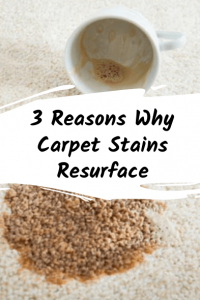 3 Reasons Why Carpet Stains Resurface