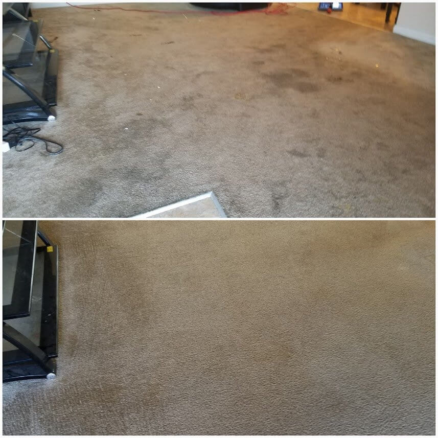 before and after carpet cleaning redondo beach ca