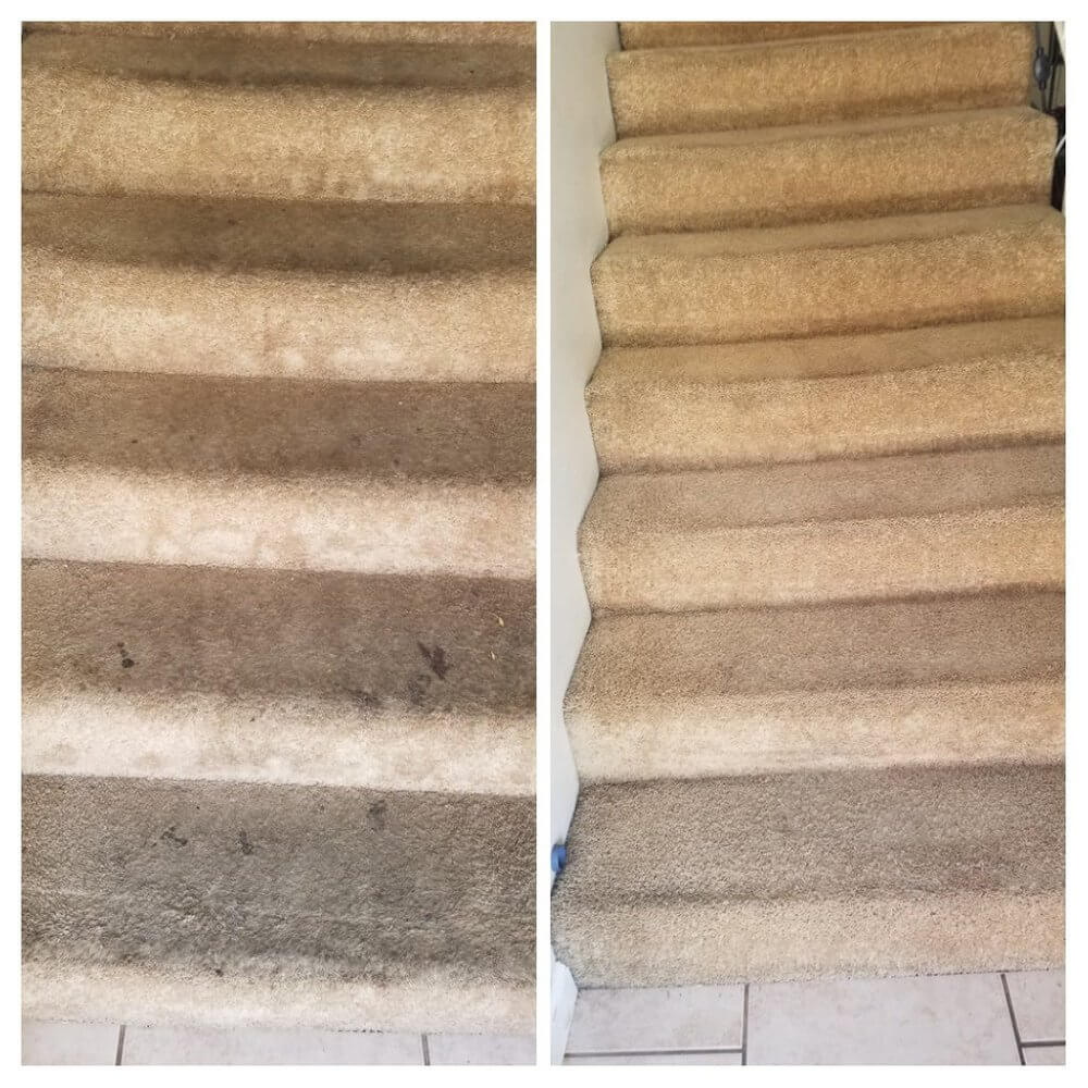 Carpet Cleaning Immaculate Home Chem Dry Of Orange County