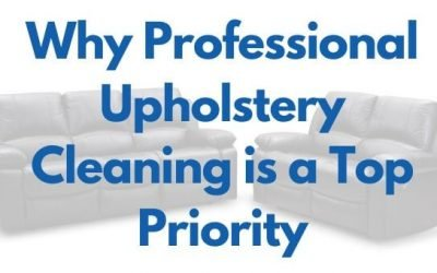 Why Professional Upholstery Cleaning is a Top Priority