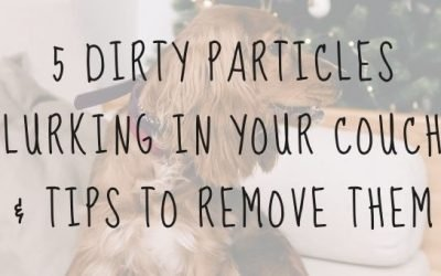 5 Dirty Particles Lurking in Your Couch & Tips to Remove Them