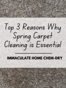 Top 3 Reasons Why Spring Carpet Cleaning is Essential